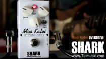 shark-ods-mookalai