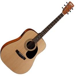 Cort AD810E-OP Acoustic/Electric Guitar