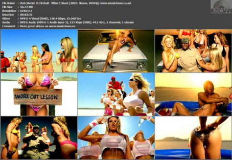 Bob Sinclar ft. Fireball - What I Want (2007, House, DVDrip)