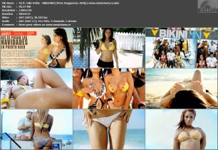 JQ ft. Julio Voltio – Bikini Mini [2010, HDrip] Music Video