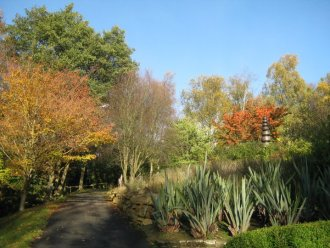 botanic gardens durham autumn