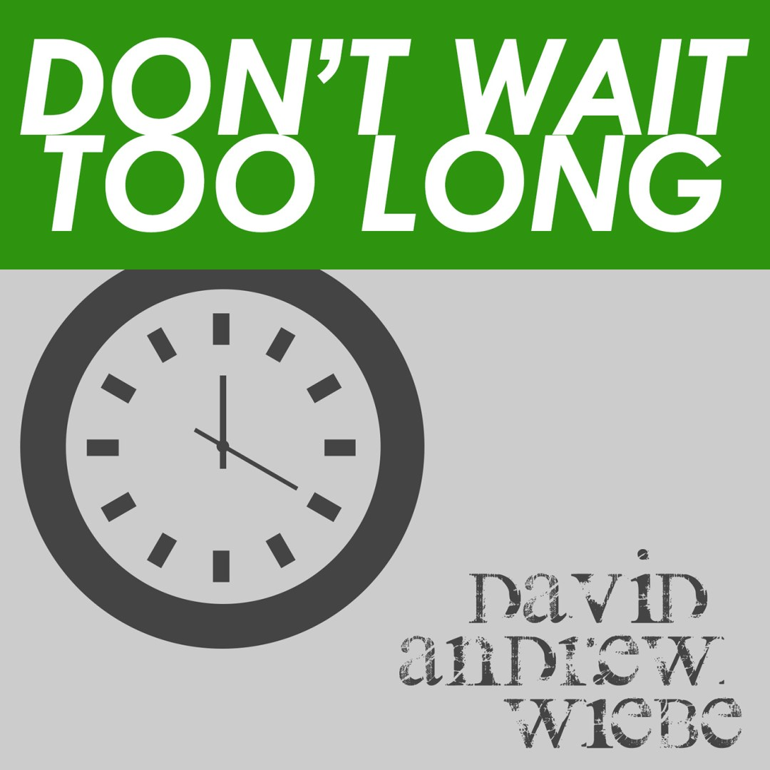 David Andrew Wiebe - Don't Wait Too Long