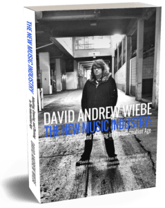 The New Music Industry book paperback