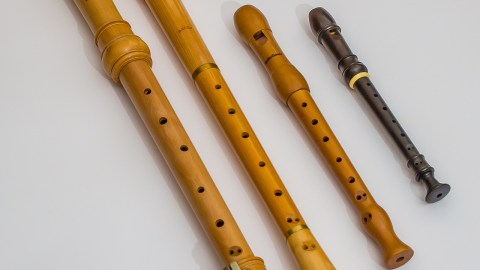 the recorder music instrument