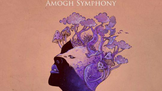 Amogh Symphony – IV.1 & IV.2 [Vmbrella 2019]