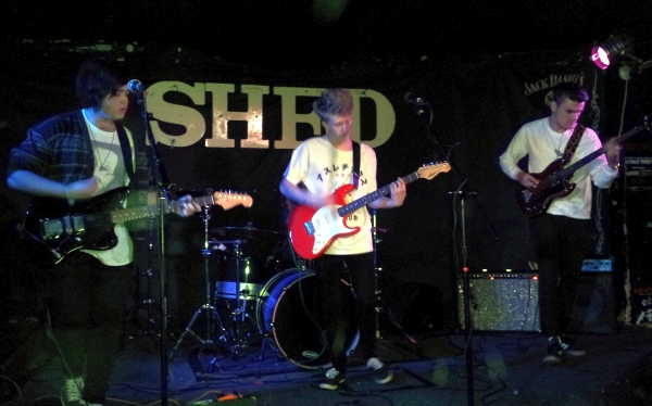 Alligatr at The Shed, 2016