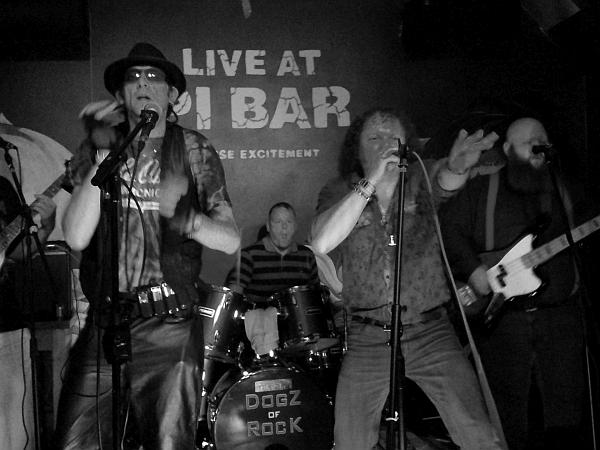 The Dogz of Rock at Pi Bar, June