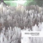 Shearwater – Palo Santo