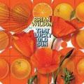 Brian Wilson – That Lucky Old Sun
