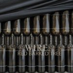 Wire – Red Barked Tree
