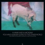 A Hawk And A Hacksaw – You Have Already Gone To The Other World