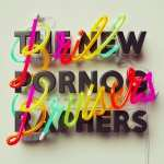 The New Pornographers – Brill Bruisers