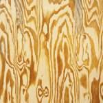 Mazes – Wooden Aquarium