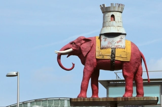 Elephant Days