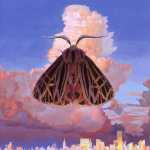 Chairlift – Moth