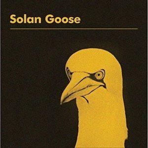 Erland Cooper - Solan Goose