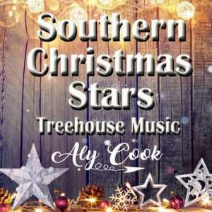Aly Cook New Single is Under the Southern Christmas Stars