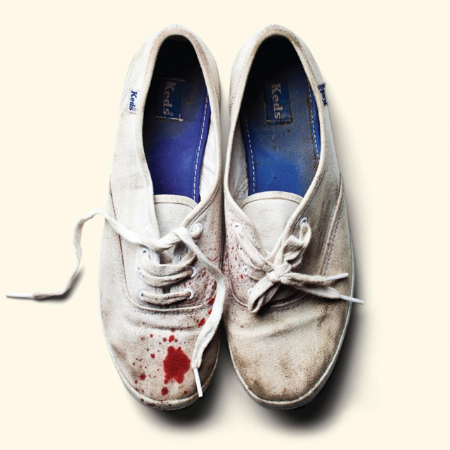 sleigh-bells-reign-of-terror-album-cover