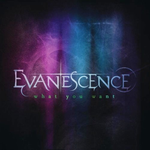 Video Evanescence - What You Want