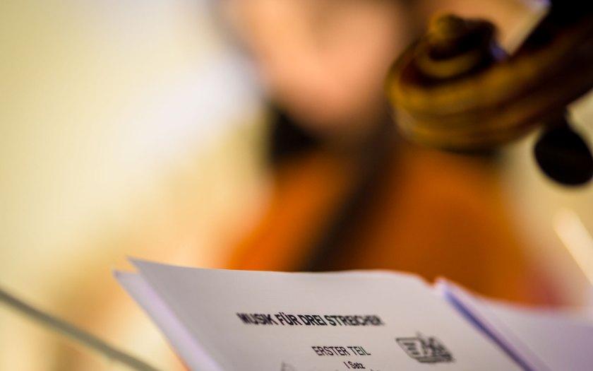 Musik für drei Streicher. Foto: Hufner
