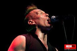 The Membranes in London