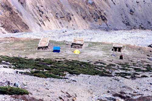 Our camp at Thorung Pedi
