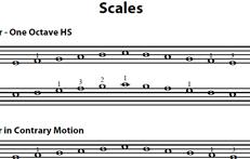 CMJV3: Technique Scales