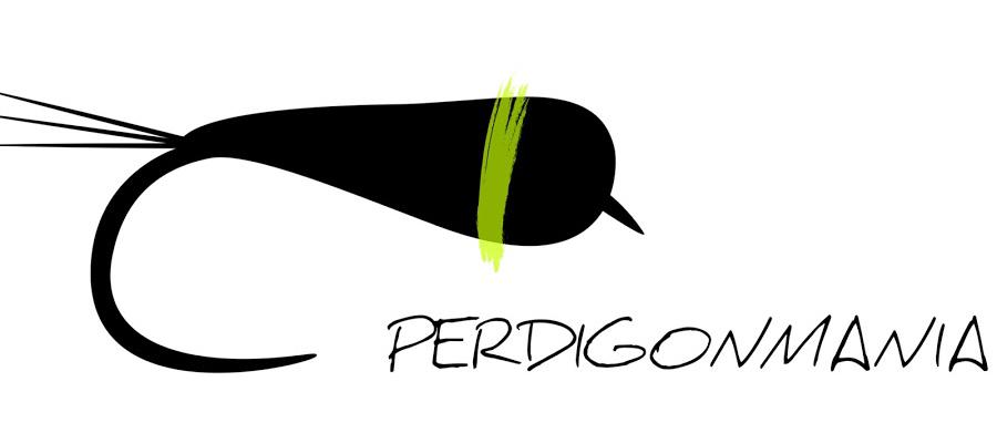 Perdigonmania Masterclass