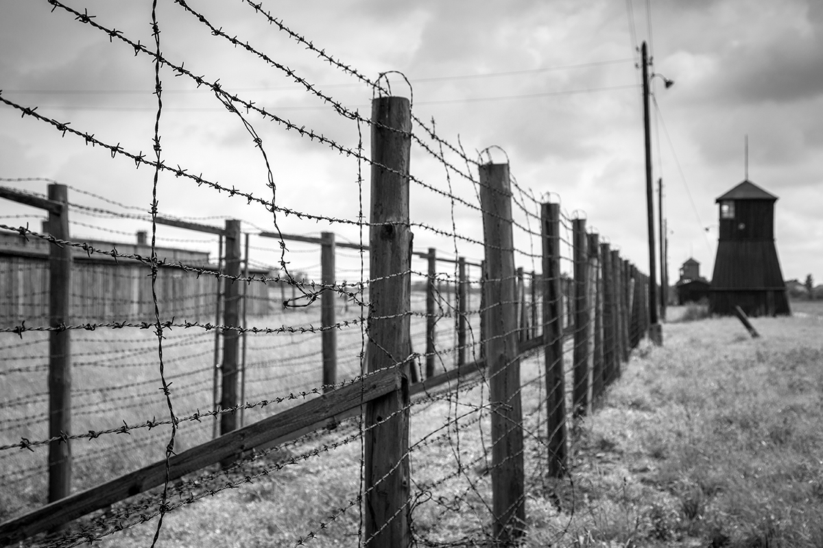 A close-up black-and-white image of two rows of barbed wire along a concentration camp. In the distance are the guard towers set against a cloudy gray sky.