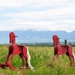 Two Horses Outside Bozeman