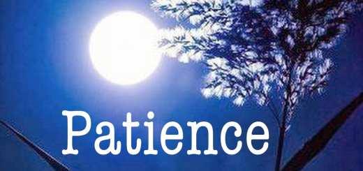 La patience est de 3 sortes, et celle de Yussûf était la plus parfaite