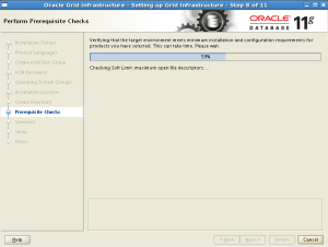 Oracle Enterprese Linux uzerine Oracle Grid Infrastructure 11g R2 Kurulumu