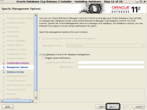 Oracle Linux Uzerine Oracle Grid Infrastructure ile ASM mimarisi ile Oracle 11g R2 Kurulumu