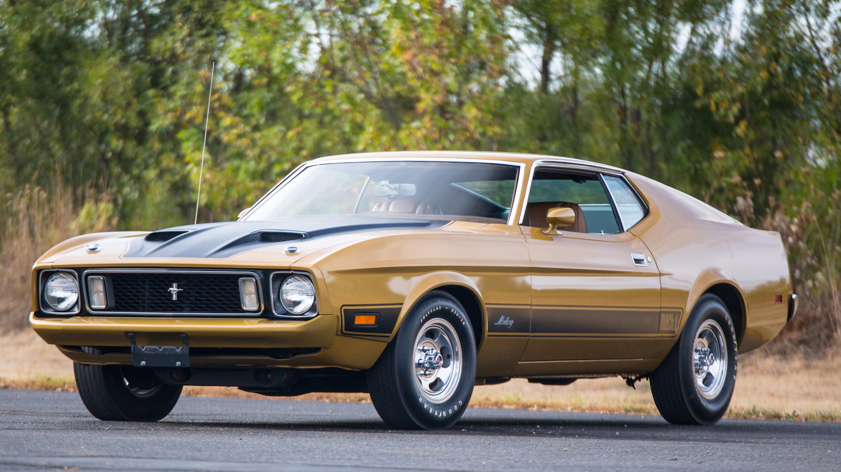 Favorite this post aug 13. 1973 Ford Mustang Ultimate In Depth Guide