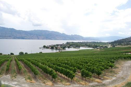Winery Hopping Okanagan