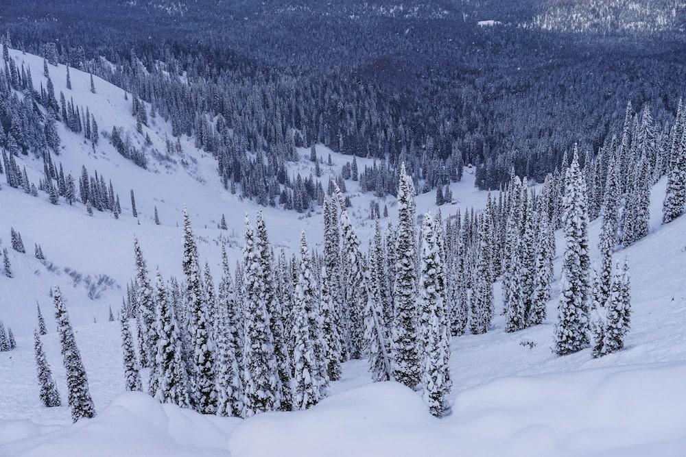 Fernie Mountain Resort