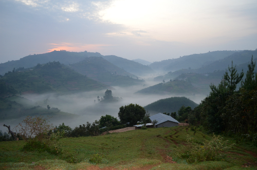 misty mountains uganda