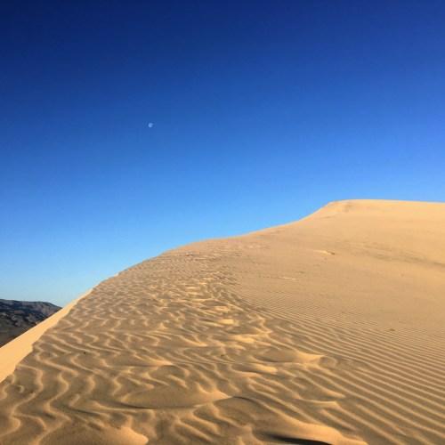 Mojave Preserve visit