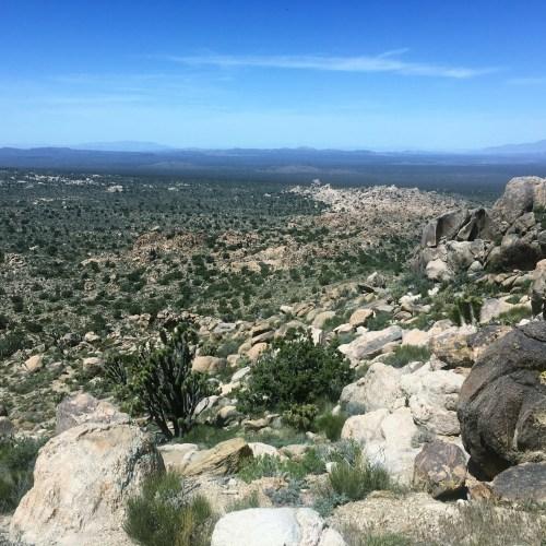 Mojave Preserve visit beautiful