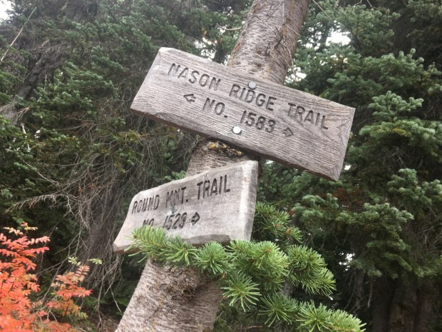 Round Mountain Trail to Nason Ridge and Alpine Lookout | Must Hike