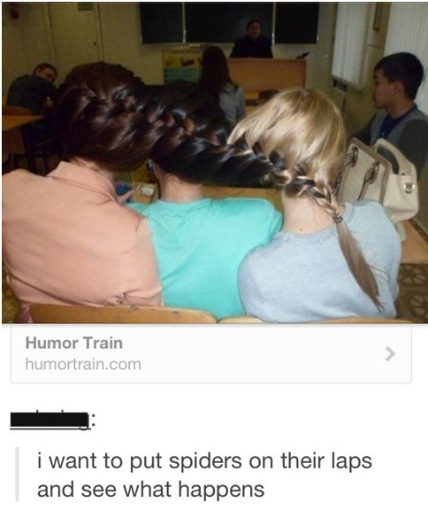 Funny Pictures to Make Your Tumblr Blog Hilarious
