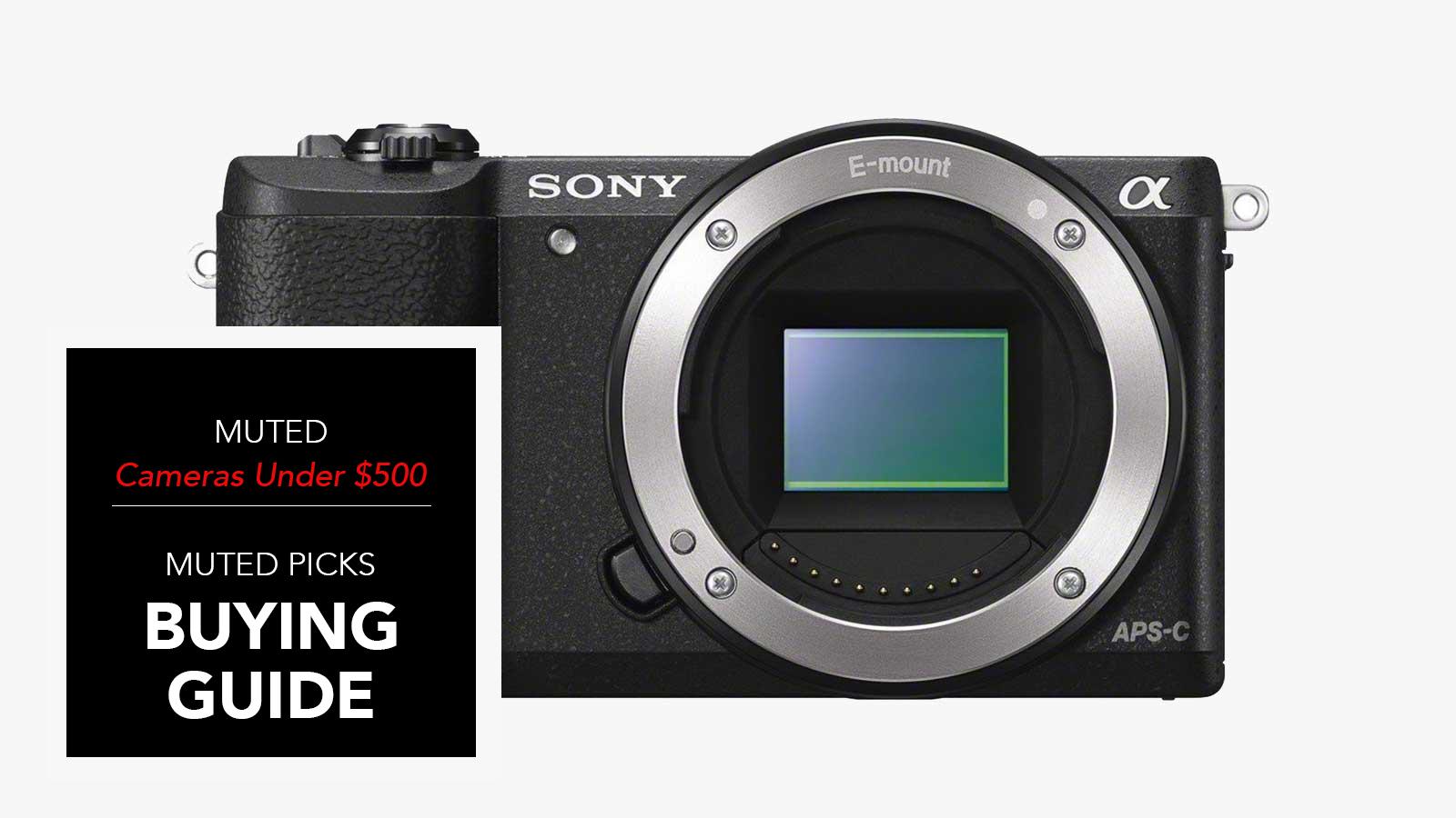 best digital cameras under 500