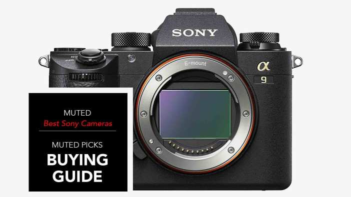 Best Sony Mirrorless Cameras for Any Budget
