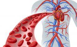 gejala jantung koroner dari Agarillu Series Herbal untuk kita semua