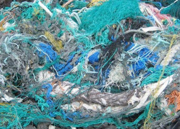 Cornish Seas