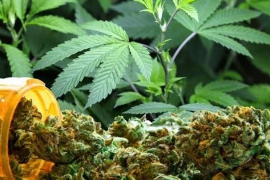 Marihuananın (esrar) tıbbi amaçlı kullanımı