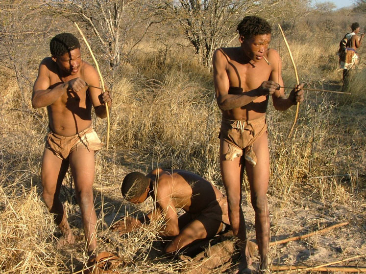Khoisan (San) Kabilesi'nin avlanma çabasından bir kare