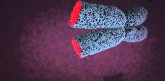 Kanser Hücrelerinin Ölümsüzlük İksiri Telomeraz Enzimi Nedir?
