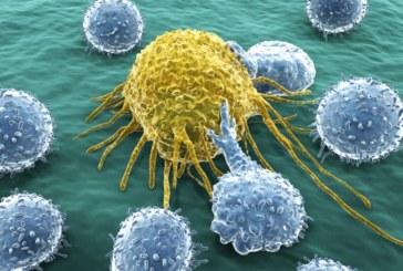Mutasyon Nedir? Nasıl Kanserleşmeye Neden Olur?