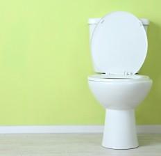 Yeşil duvar önünde beyaz tuvalet